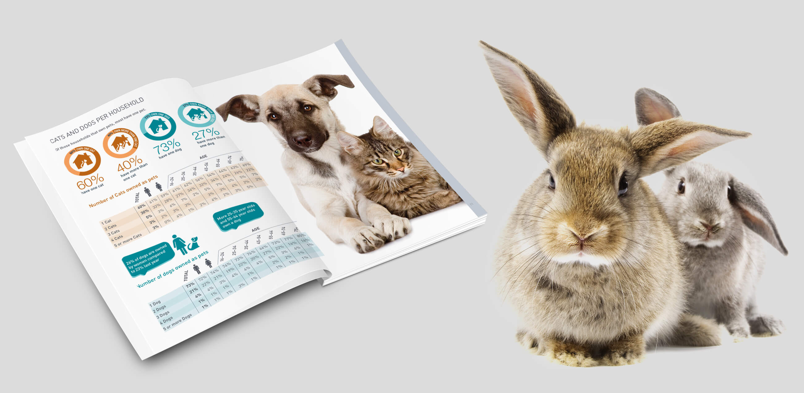 Data Report inside spread for PFMA Pet Food Manufacturers Association